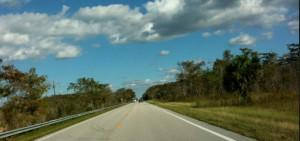 road_everglades
