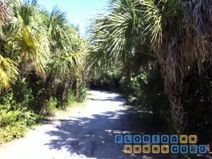 Wanderweg im Lovers Key State Park